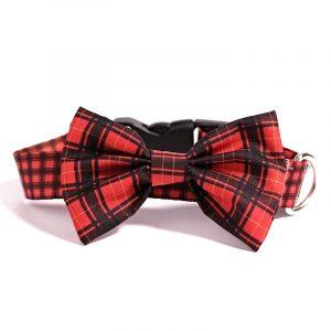 collar escoces